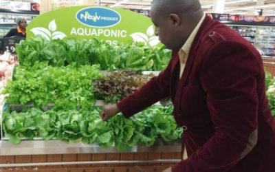 Decoupled aquaponics Kenya