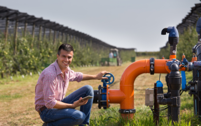 In the spotlight: our sustainable irrigation solutions